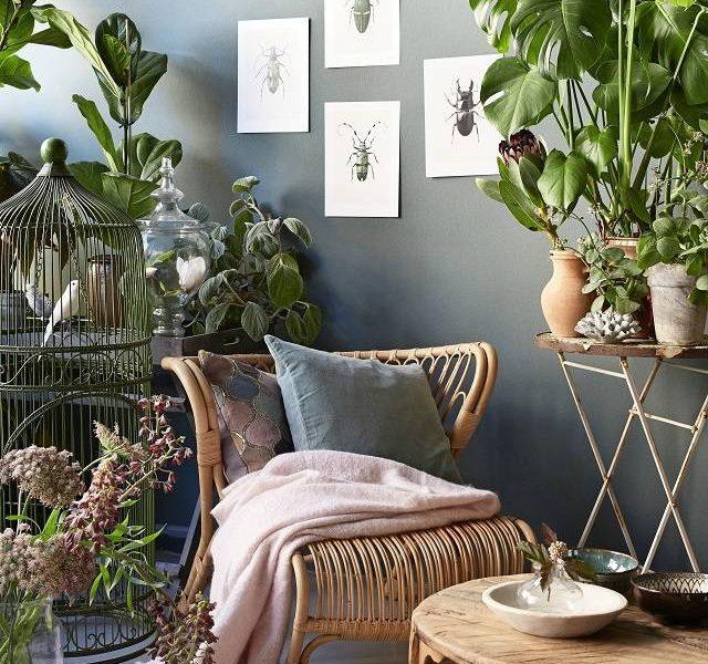 Designing a Holistic Home