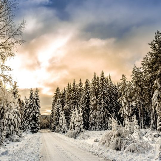 Top tips for Staying Healthy this Winter