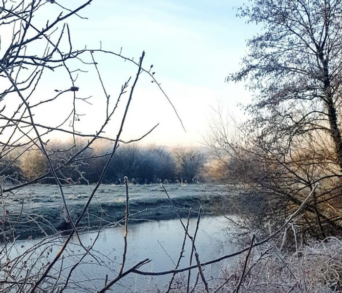 Capturing the beauty of Winter