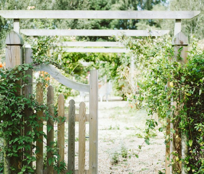 How to Make The Most Of Your Garden This Year